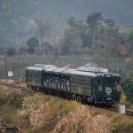 train0181_photo0053