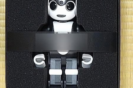 【ロボット】『ロボホン』 家へやってきた!