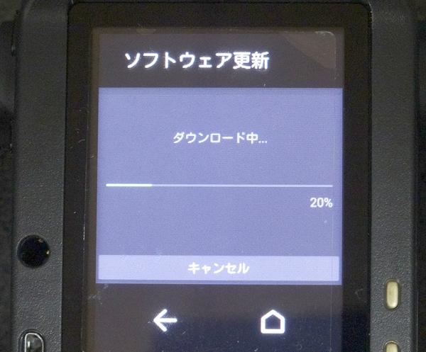 DSC03785