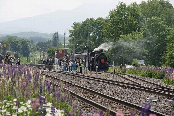 train0016_photo0031