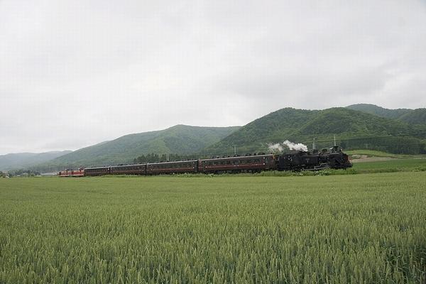 train0016_photo0036