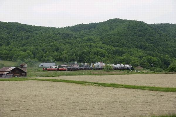 train0016_photo0038