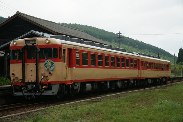 DSC00785