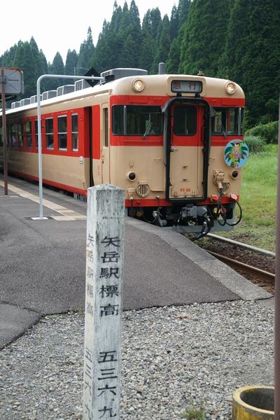 DSC00794