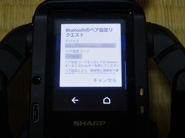 DSC08278