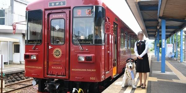 【鉄道】長良川鉄道 川風